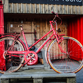 Red Bicycle by Bobs Macklow-Smith - Transportation Bicycles ( iceland, red, reykjavik, reykjavik_harbour, red_bicycle, fun, bicycle,  )