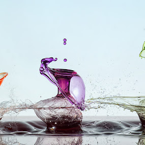 Shoot the Evolution by Markus Reugels - Abstract Water Drops & Splashes ( markus reugels. pellet, rifle, water drop )