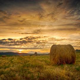 Magnifique sunset by Dobre Cezar - Landscapes Prairies, Meadows & Fields