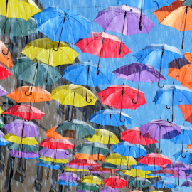 swinging in the rain by Ruth Doyle - Artistic Objects Other Objects ( umbrellas, art, bath, rain, colours )