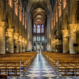 Led By the Light by Jerry Olschki - Buildings & Architecture Places of Worship ( france paris notre dame )