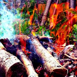 Fire by Žaklina Šupica - Abstract Fire & Fireworks