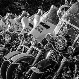 by William Boyea - Transportation Motorcycles ( motorcycle, cops, motorbike, police, proud, motorcycles, bike )