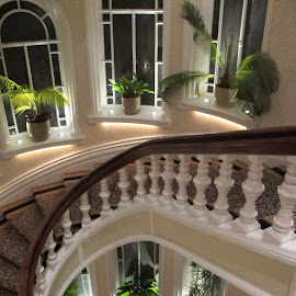 Curved staircase by Vicki Clemerson - Buildings & Architecture Architectural Detail ( curved staircase, stairs, staircase, newell posts, steps )