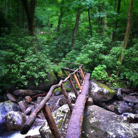Foot bridge by Christopher Gray - Instagram & Mobile iPhone ( beadheadnymph, smoky mountains )