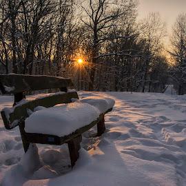 Winter at park by Vanja Vidaković - City,  Street & Park  City Parks ( adica park, vukovar, winter, snow, croatia )