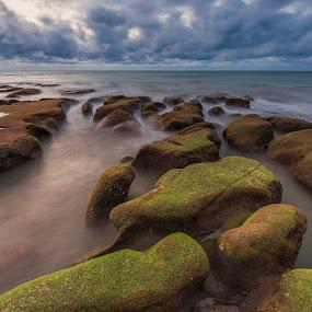 mossy Rocks by Christianto Mogolid - Landscapes Cloud Formations ( sky, moss, sea, ocean, landscape, rocks,  )