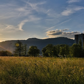 Solothurn West - Sunset by Augustin Anic - City,  Street & Park  Vistas ( building, sunset, meadow, spring, west )