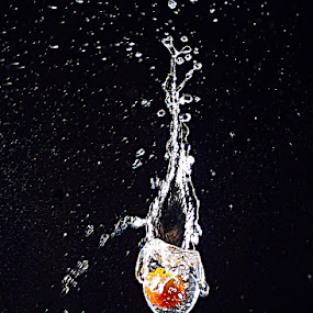 Fruit Splash by Asirah Abrah - Artistic Objects Glass ( water, fruit, splash, fresh, art, artistic, glass )