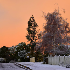 Sunrise and snow by Anne Andrews - Novices Only Landscapes ( suburbs, orange, tasmania, rare, hoabart, australia, street, snow, white, sunrise )