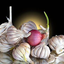 Garlics...  by Asif Bora - Food & Drink Ingredients
