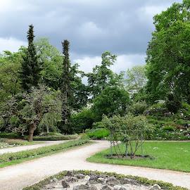 Botanical Garden .. by Dubravka Penzić - City,  Street & Park  City Parks (  )