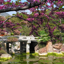 Japanese Gardens Wallpapers