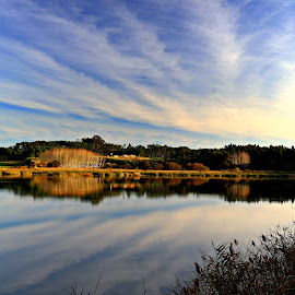 The lagoon by Gil Reis - Landscapes Waterscapes ( forests, water, nature, leiria, places, lagoons, portugal )