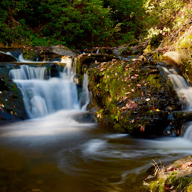 Streaming by Santford Overton - Landscapes Waterscapes ( landscapes, waterscapes, longexposure, trees, water, places, fall, leaves, light, autumn, river, travel, photography )