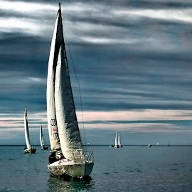 leader...sailing regata Izola, Slovenia by Bernarda Bizjak - Sports & Fitness Watersports