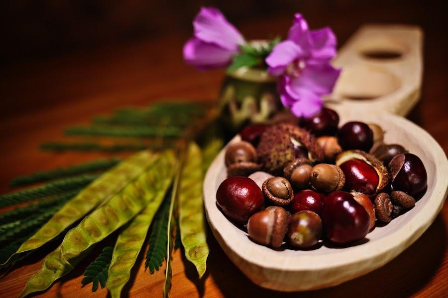 Autumn feel by Nicu Buculei - Artistic Objects Still Life ( chestnut, stillife, autumn, fall, acorn,  )