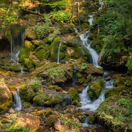 Bärenschützklamm by Laci Molnar - Nature Up Close Water ( bärenschützklamm )