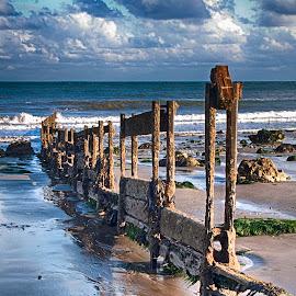 Old Groyne by Dave Godden - Landscapes Beaches ( water, defences, coast coastal, old, dave godden, groynes, sea, beach, warren, folkestone, groyne, derelict, folkestone warren, english, channel, english channel )