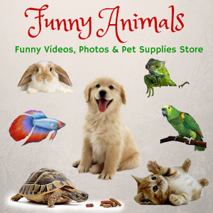 Pet Plus Supplies