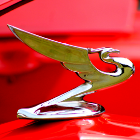 On The Hood by Leah Zisserson - Artistic Objects Antiques ( car, sculpture, red, metal, antique,  )