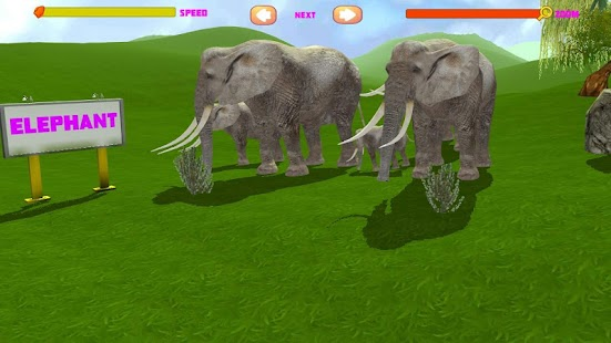 Animal 3D - screenshot