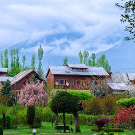 Kashmir is Colourful by Manabendra Dey - City,  Street & Park  Neighborhoods ( parks, colourful, srinagar )