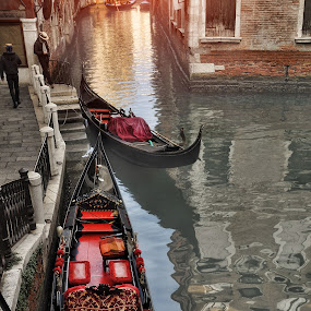 The ghosts of Venice by Pranav Babu - Landscapes Travel ( rialto, venice reflection, gondola, venice boat, venice, italy )