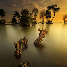 by Muhasrul Zubir - Landscapes Beaches