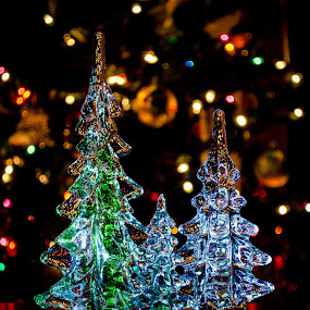 Glowing Trees by RomanDA Photography - Artistic Objects Glass ( lights, bokah, macro, christmas, glass, trees,  )