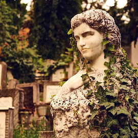 by Bartos Claude - City,  Street & Park  Cemeteries