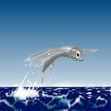 flying fish Live Wallpaper