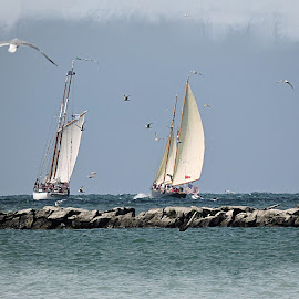 Breakwalls by Melissa Davis - Transportation Boats ( fairport harbor, sailboats, missysphotography, lake erie, breakwall )