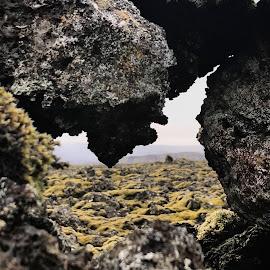 by Bjarklind Þór - Instagram & Mobile Instagram