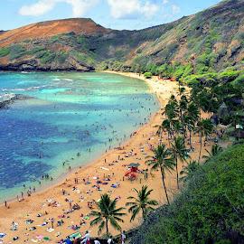 HANUMA BAY BEACH IN HAWAII by Gerry Slabaugh - Landscapes Beaches ( hanuma, hanuma bay, hanuma bay beach in hawaii, beach, volcanic crater, oahu, hawaii )