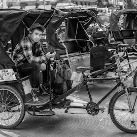 by Peter Schoeman - Transportation Bicycles ( commercial, occupation, bicycle, cycling, rider, commuting, road, rickshaw, worker, traffic, profession, sidewalk, work, biker, taxi, pack, driver, passenger, person, drive, job, male, carriage, cab, city, young, concept, tourism, bicycling, ride, bike, vehicle, public, street, men, working, man, business, motion, transport, people, lifestyle, transportation, outdoor, urban, service, travel, movement, sitting, customer )