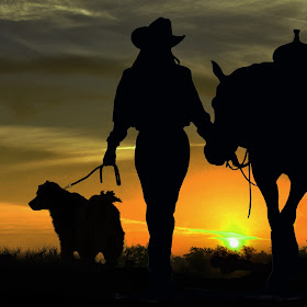 Sunset-Cowgirl-Dog.jpg