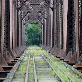 Railroad Bridge by Ann Overhulse - Buildings & Architecture Bridges & Suspended Structures ( pwc bridges )