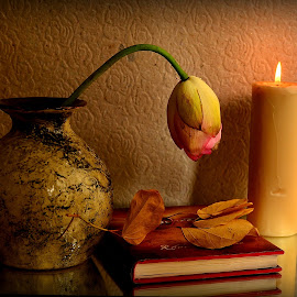 Night Reading by Prasanta Das - Artistic Objects Still Life ( candle, books, vase, composition, night reading, flower )