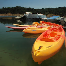 kayak by Francisco Cardoso - Transportation Boats ( water, orange, fish, lake, kayak )