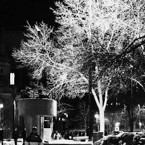Cold Night by Doug Maertz - City,  Street & Park  Street Scenes