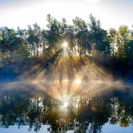 Sun Rise by Darrell Evans - Landscapes Waterscapes ( green, reflection, nature, flora, sun, trees, water, mist, morning, outdoor, plant, river, rays, lake, no people, landscape, fog )