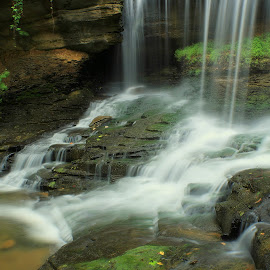 OASIS by Dana Johnson - Landscapes Waterscapes ( waterscape, cascade, creek, falls, waterfall, landscape )