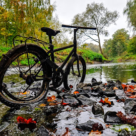 Riders Wanted by Jerry Kambeitz - Transportation Bicycles ( rider, wreck, fall, leaves, rocks, wrecked, river, bicycle )