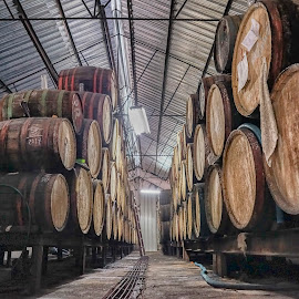 Rum Factory, Cuba by Michael Otter - Food & Drink Alcohol & Drinks