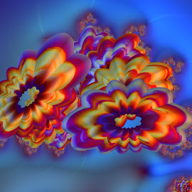 Flowers 9 by Cassy 67 - Illustration Abstract & Patterns ( abstract art, colorful, digital art, wallpaper, fractal, flowers, fractals, digital, flower )