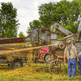 Old time threshing by Kim Price - People Street & Candids ( yesteryear, small town, tractors, farming old style )