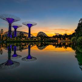 by Gordon Koh - City,  Street & Park  City Parks (  )