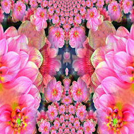 Dahlia Fractal by Tina Dare - Digital Art Things ( abstract, nature, pattern, pink, fractal, dahlia, digital, design, shapes )