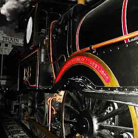 Steam Engine by Mike Mills - Transportation Trains ( wheel, engine, transport, rail, train, historic, steam )